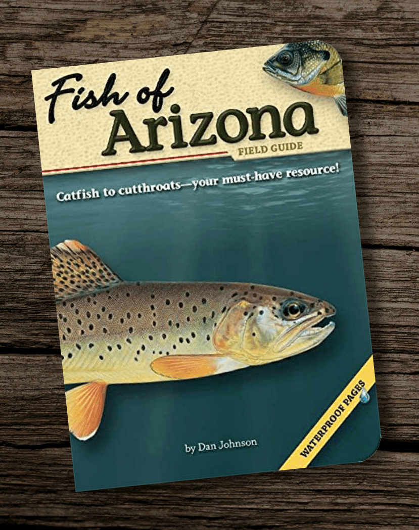 Fish-of-Arizona-Field-Guide-Best-Fishing-Books-Guides-in-AZ