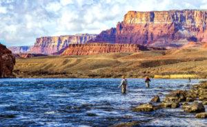 lees-ferry-colorado-river-fishing-guide-az