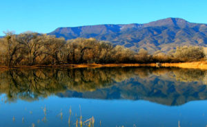 Dead-Horse-Ranch-Lake-fishing-guide-az