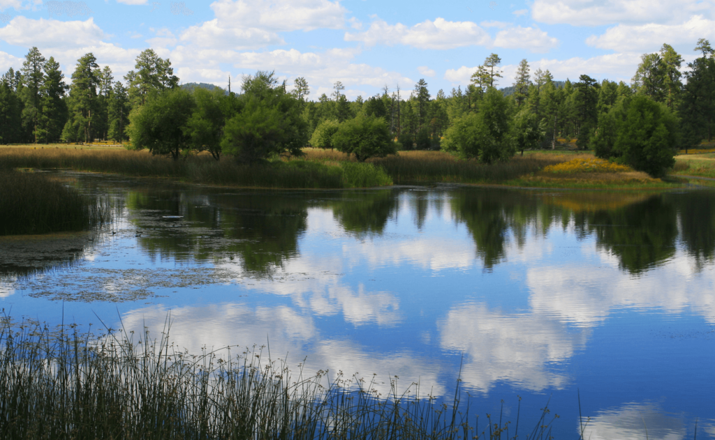 Cataract-Lake-Fishing-Guide