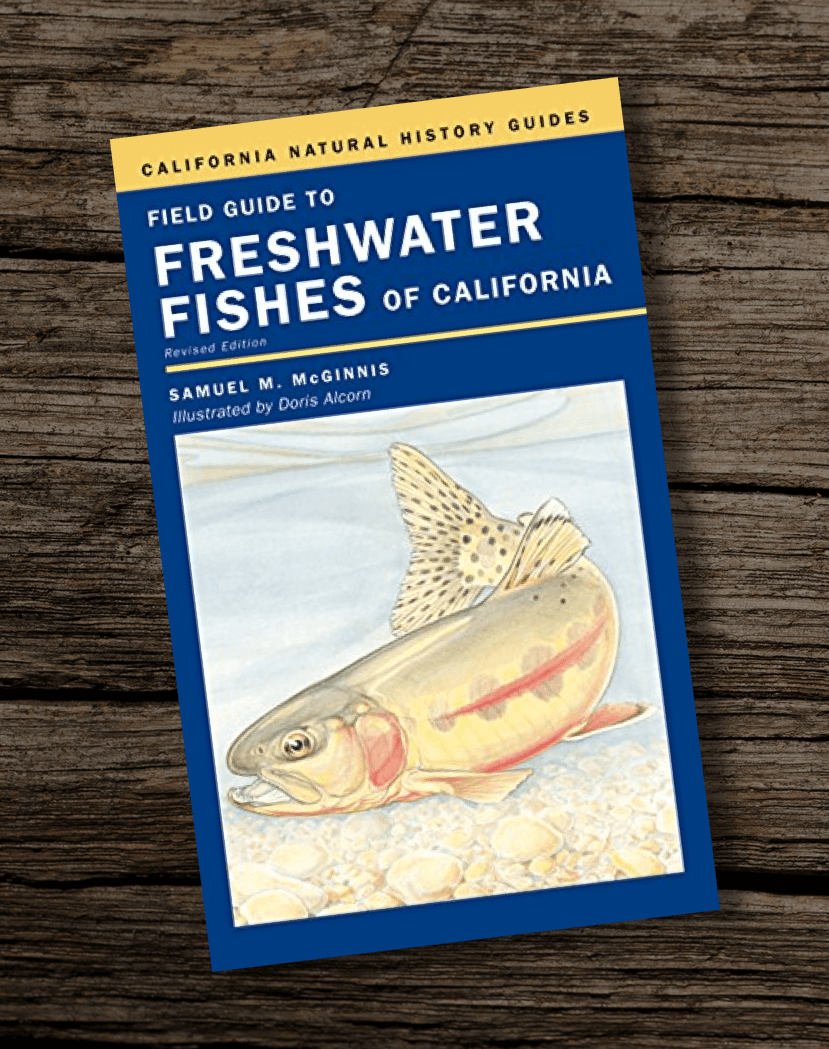 Fishing-Book-Field-Guide-to-Freshwater-Fishes-of-California