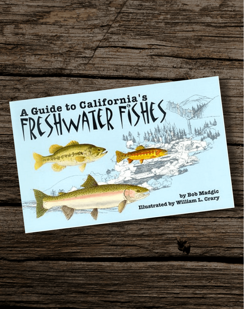 Fishing-Book-Guide-to-Californias-Freshwater-Fishes