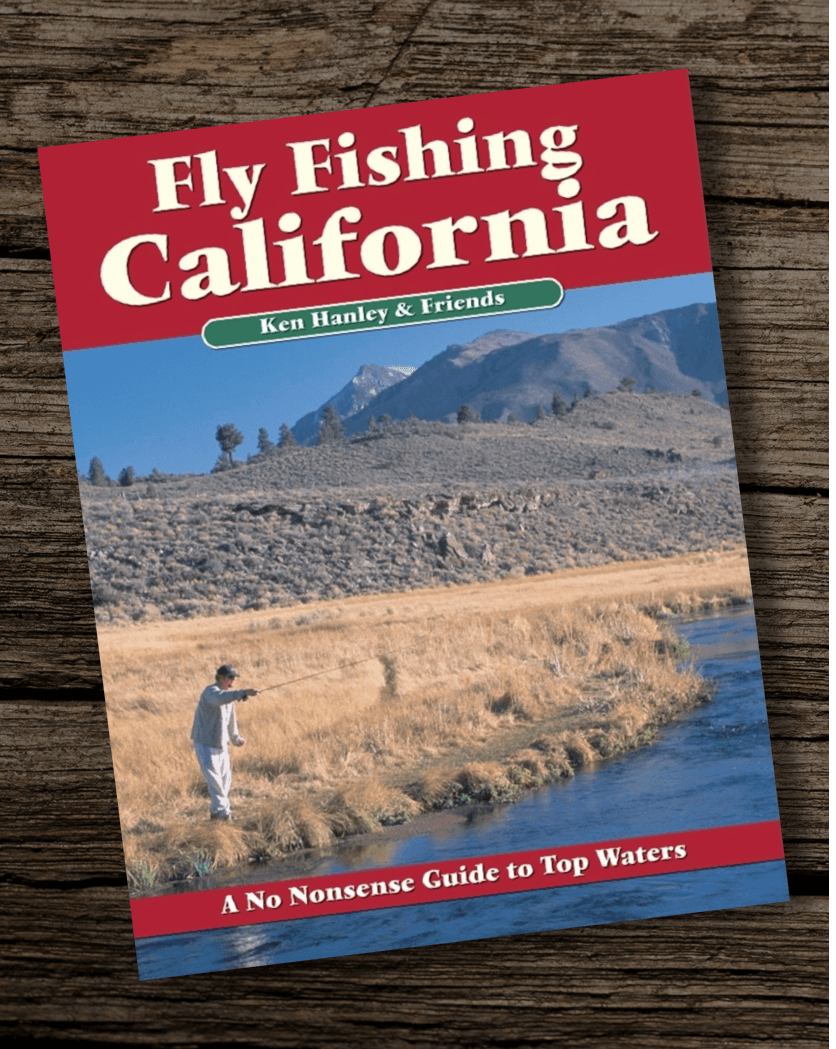 Fishing-Book-The-Definitive-Guide-to-Fishing-Central-California Copy