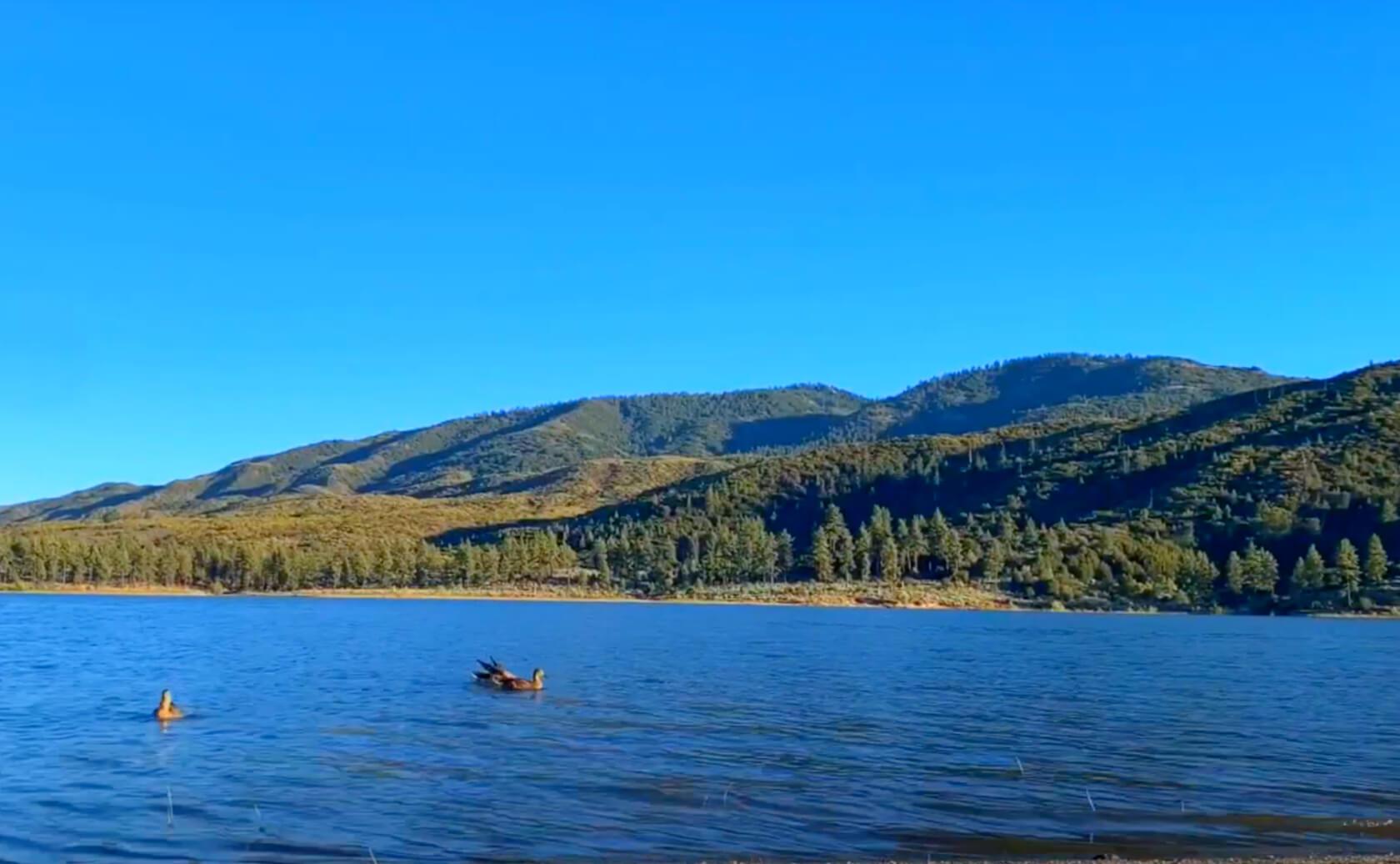 Hemet-Lake-CA-Fishing-Guide-04