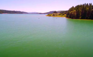 Henry-Hagg-Lake-OR-Fishing-Guide-05-2