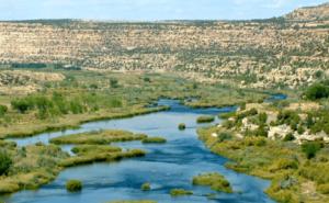 San-Juan-River-Fishing-Guide-NM