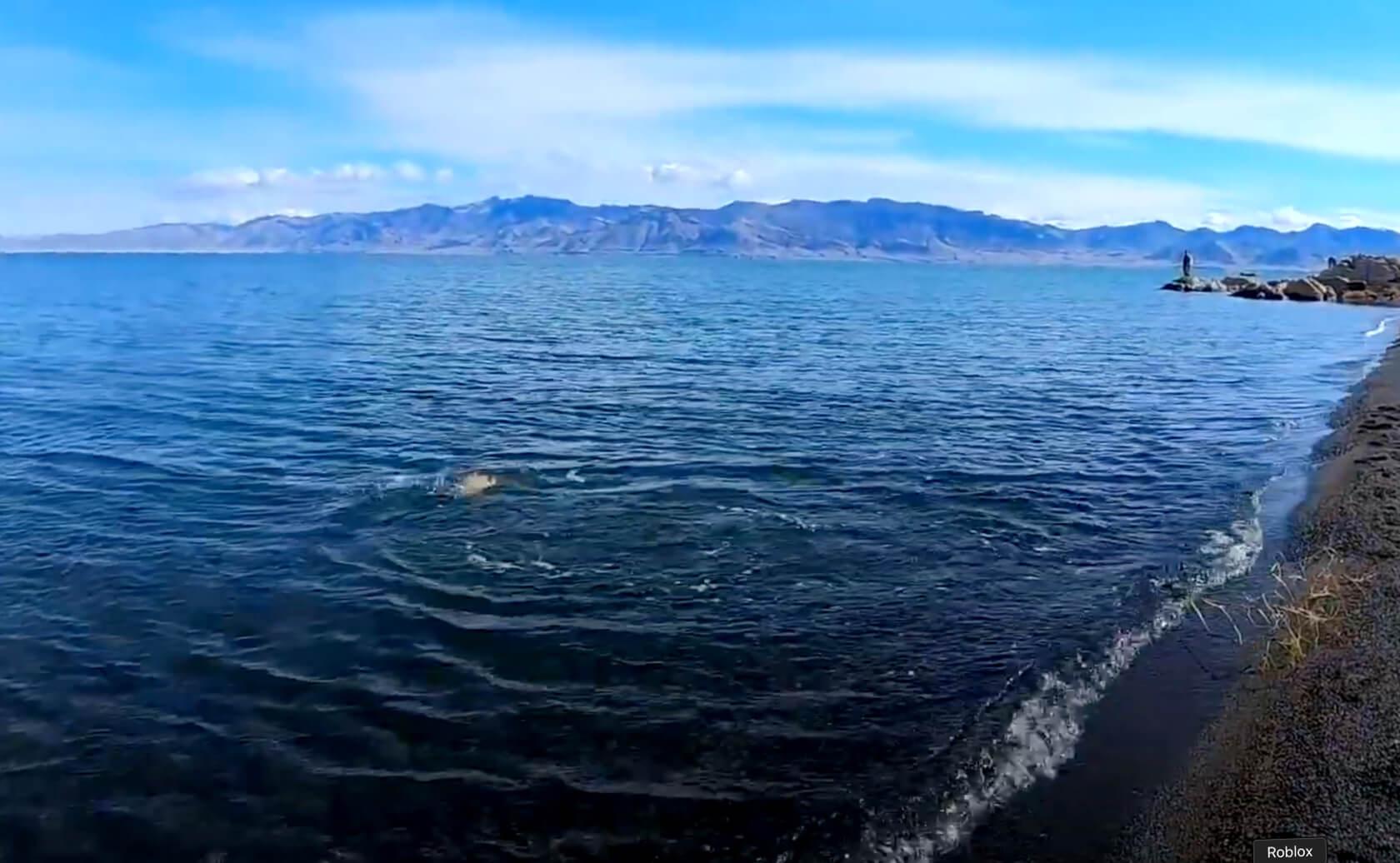 pyramid-lake-fishing-guide-nv-01 copy 3