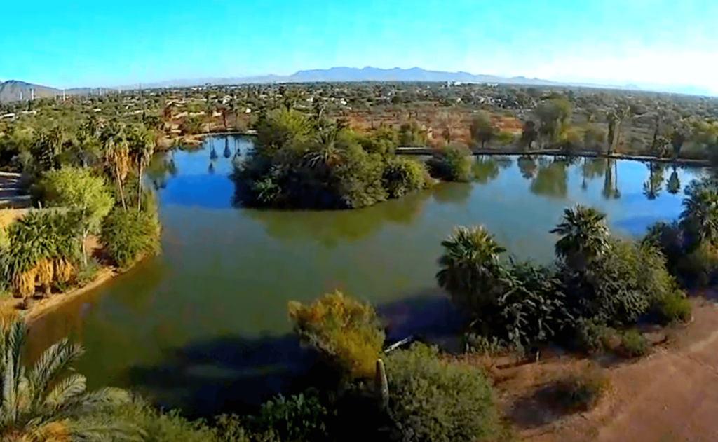 Evelyn-Hallman-Pond-Lake-Fishing-Guide-Tempe-AZ-01