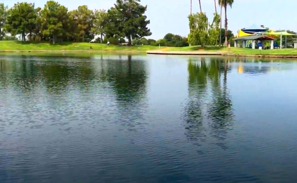 Freestone-Park-Fishing-Guide-Gilbert-AZ-03
