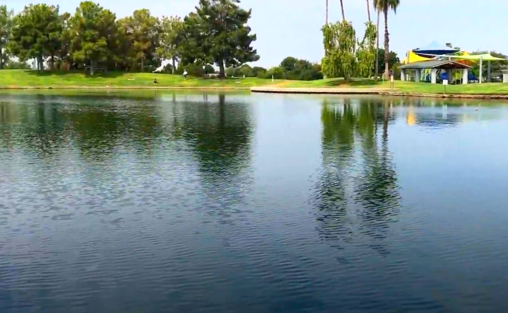 Freestone-Park-Fishing-Guide-Gilbert-AZ-03