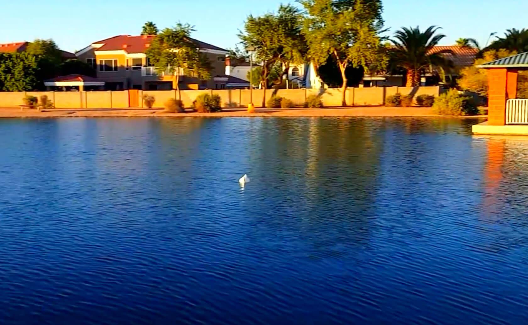 McQueen-Park-Fishing-Guide-Gilbert-AZ-02