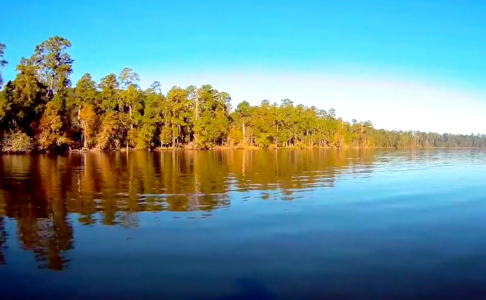 Lake Conroe-Fishing-Guide-Gilbert-TX-04
