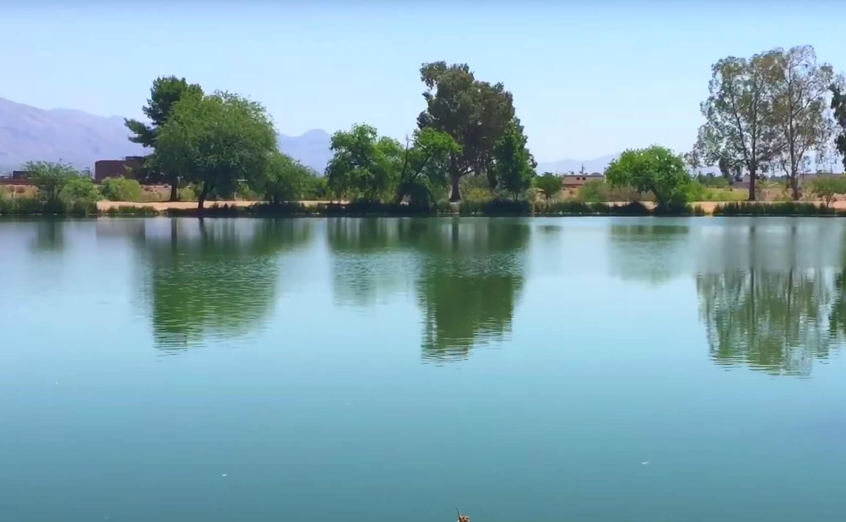 Silverbell-Lake-Fishing-Guide-Tucson-AZ-02