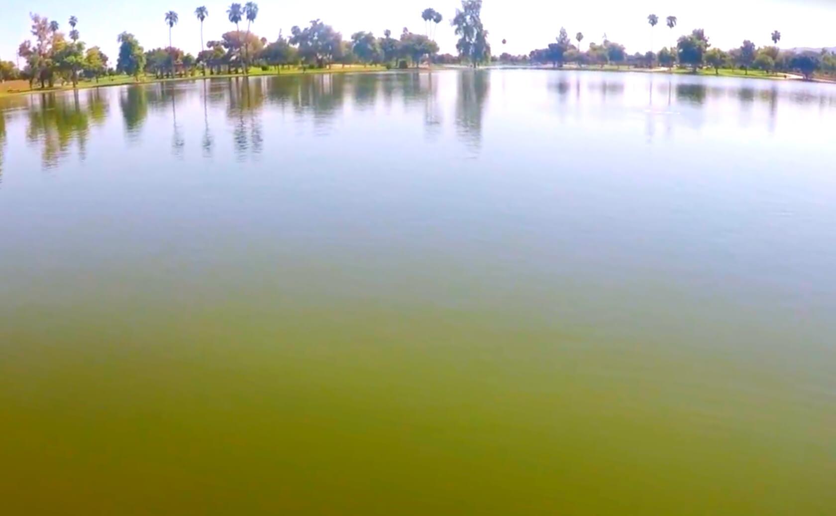 Alvord-Cesar-Chavez-Lake-fishing-guide-report-phoenix-az-01