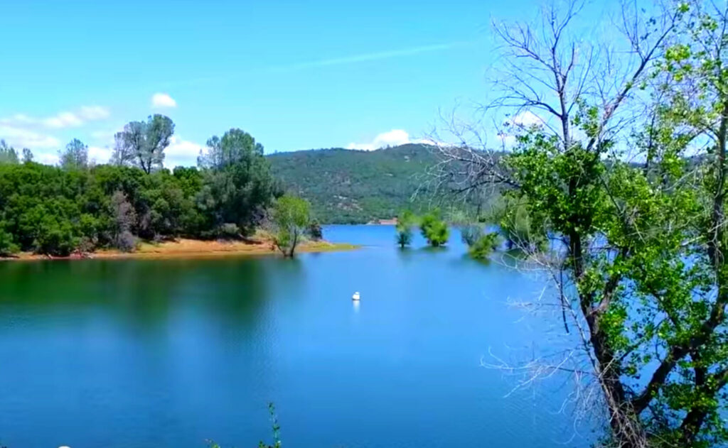Collins-Lake-fishing-guide-report-browns-valley-ca-04