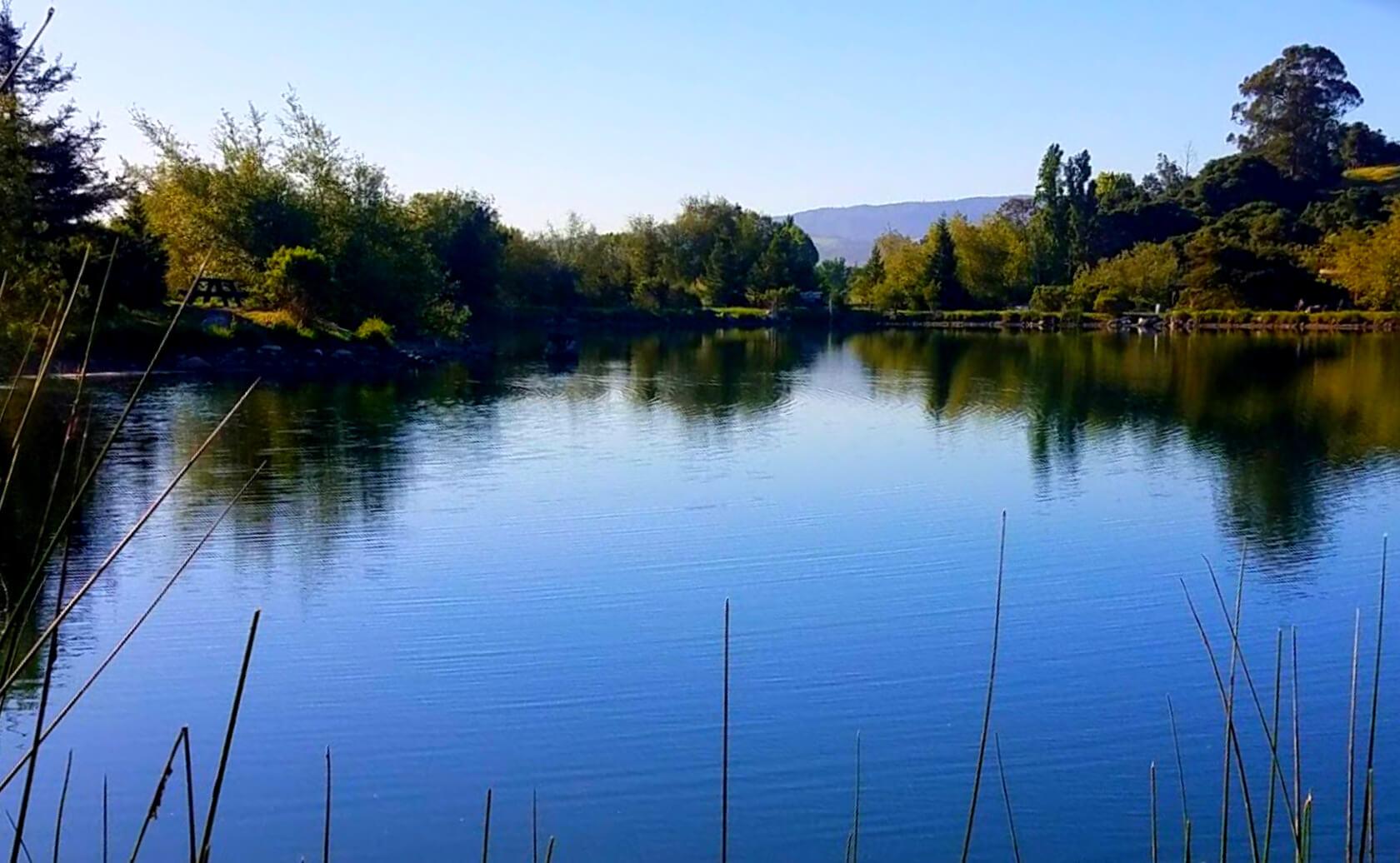 McAlpine-Lake-fishing-guide-report-San-Juan-Bautista-ca-01