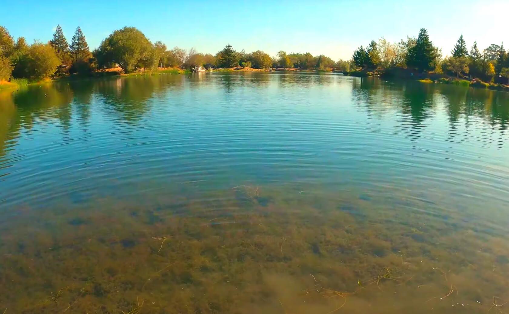 McAlpine-Lake-fishing-guide-report-San-Juan-Bautista-ca-04