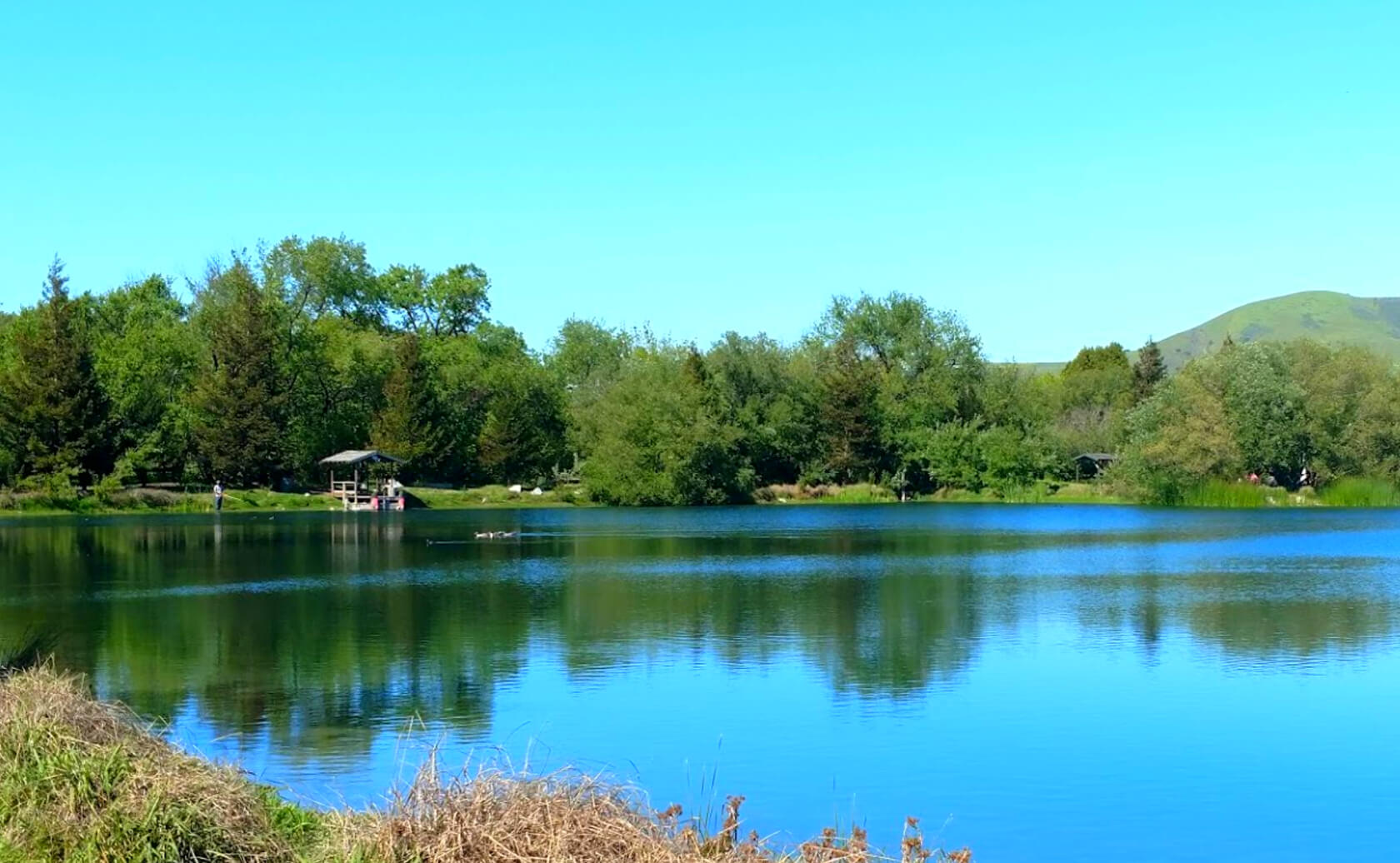 McAlpine-Lake-fishing-guide-report-San-Juan-Bautista-ca-05