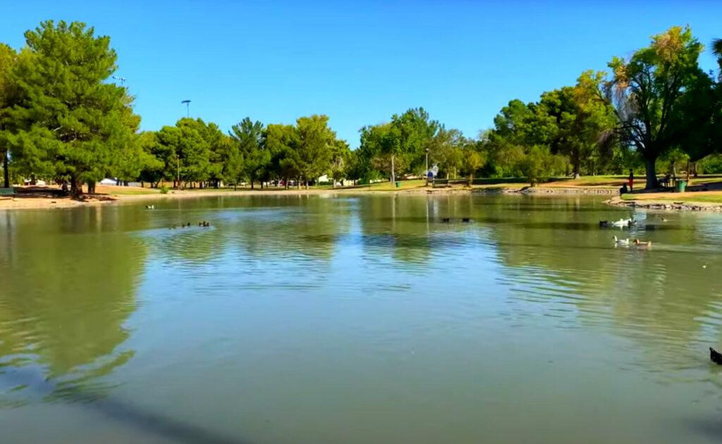 Roadrunner-Pond-Lake-fishing-guide-report-phoenix-az-01