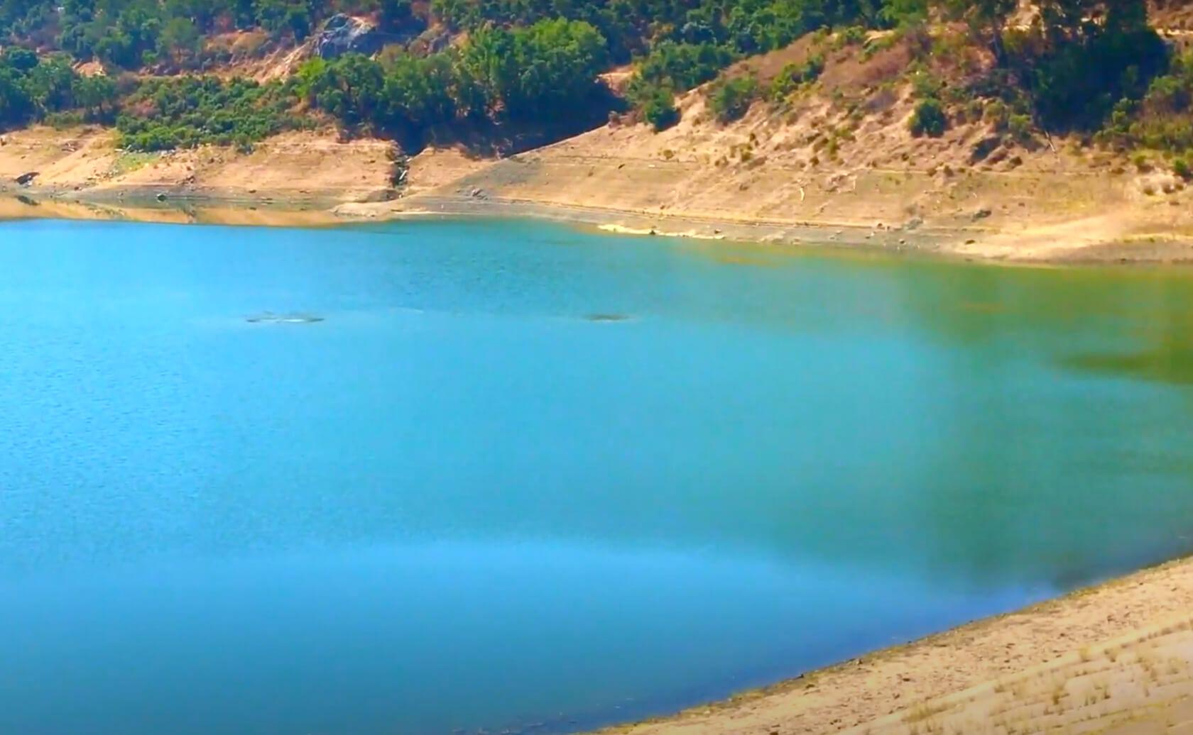 Almaden-Reservoir-Lake-Fishing-Guide-Report-San-Jose-CA-01