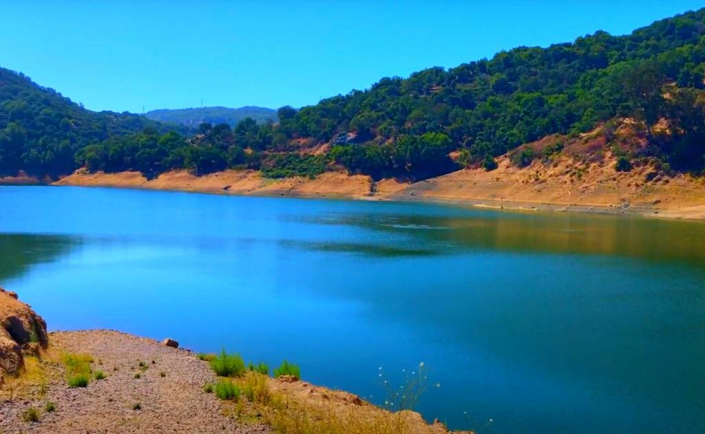 Almaden-Reservoir-Lake-Fishing-Guide-Report-San-Jose-CA-02