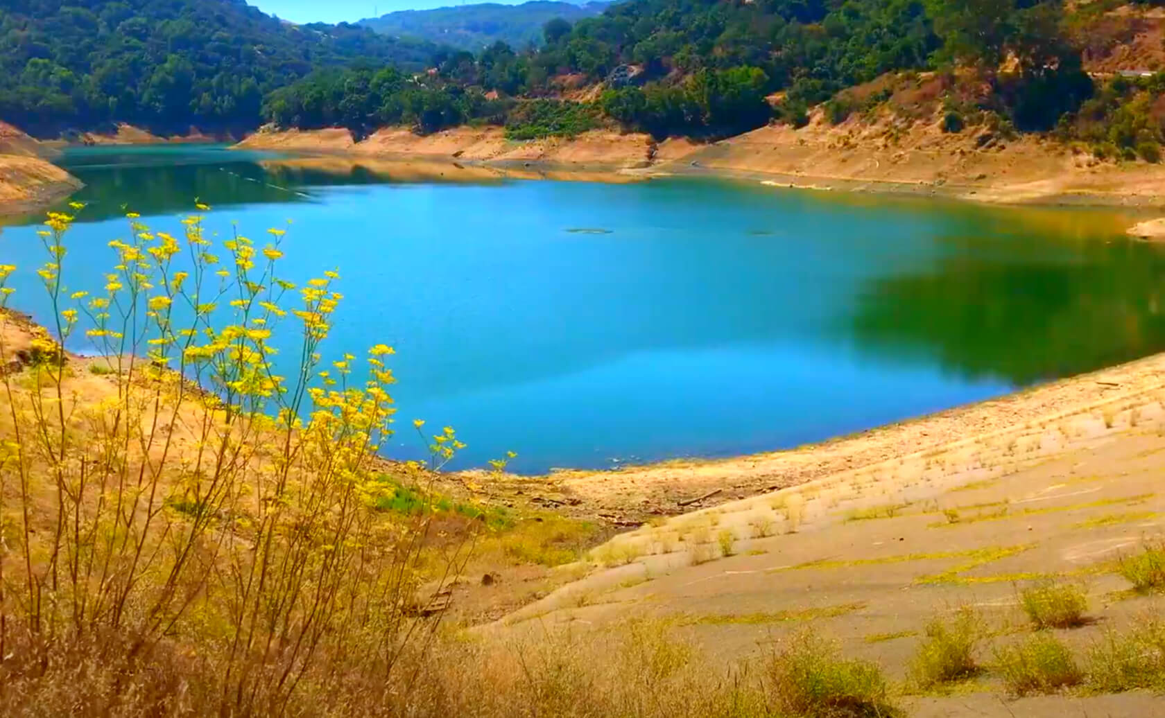 Almaden-Reservoir-Lake-Fishing-Guide-Report-San-Jose-CA-03