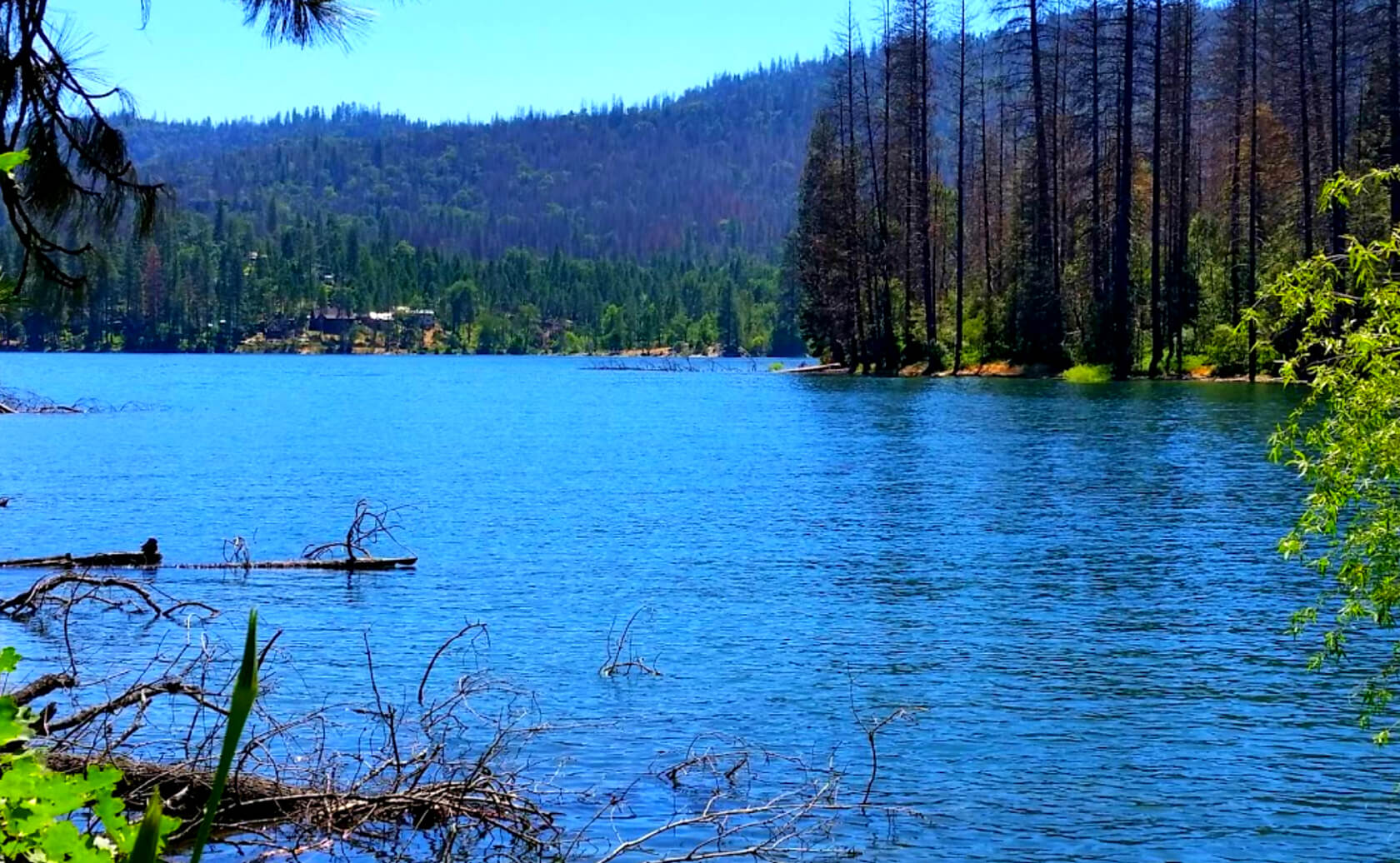 Bass-Lake-Reservoir-Fishing-Guide-Report-California-04