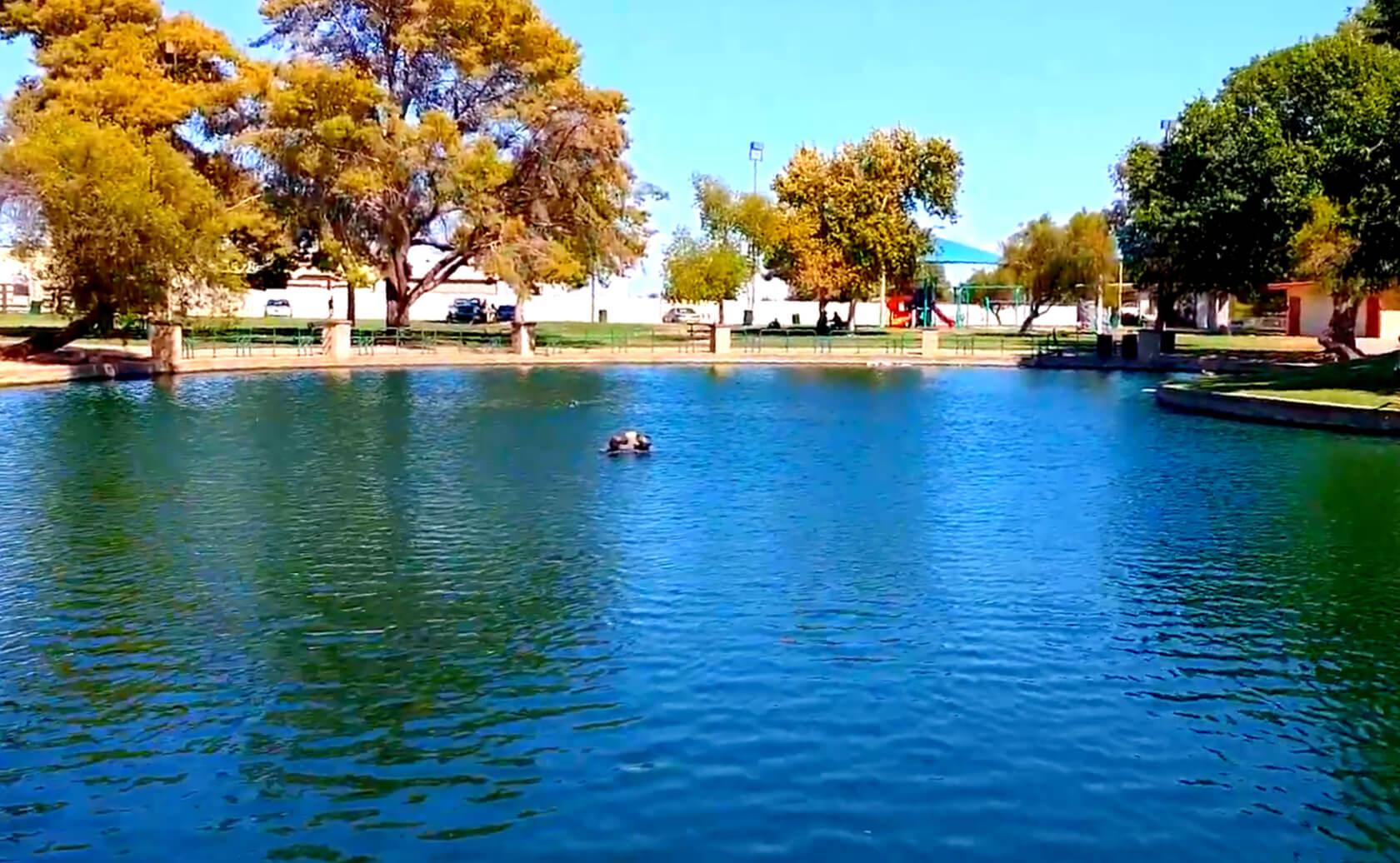 Bonsall-Pond-Lake-Fishing-Guide-Report-Glendale-AZ-01