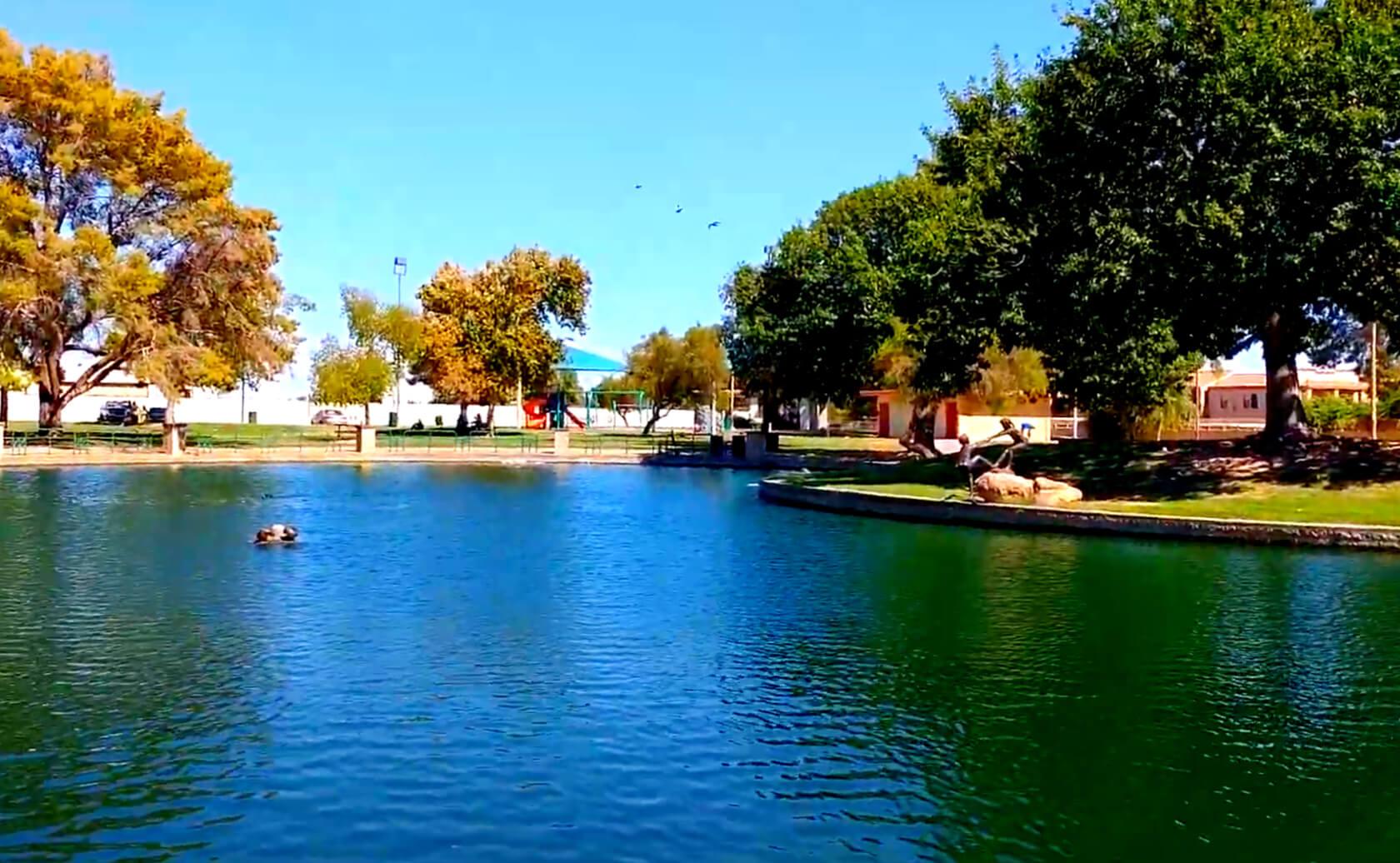 Bonsall-Pond-Lake-Fishing-Guide-Report-Glendale-AZ-02