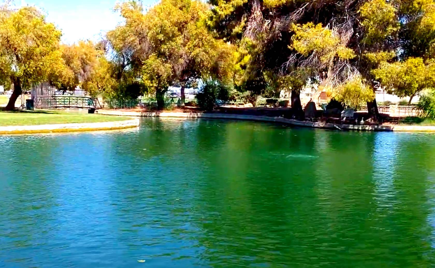 Bonsall-Pond-Lake-Fishing-Guide-Report-Glendale-AZ-03