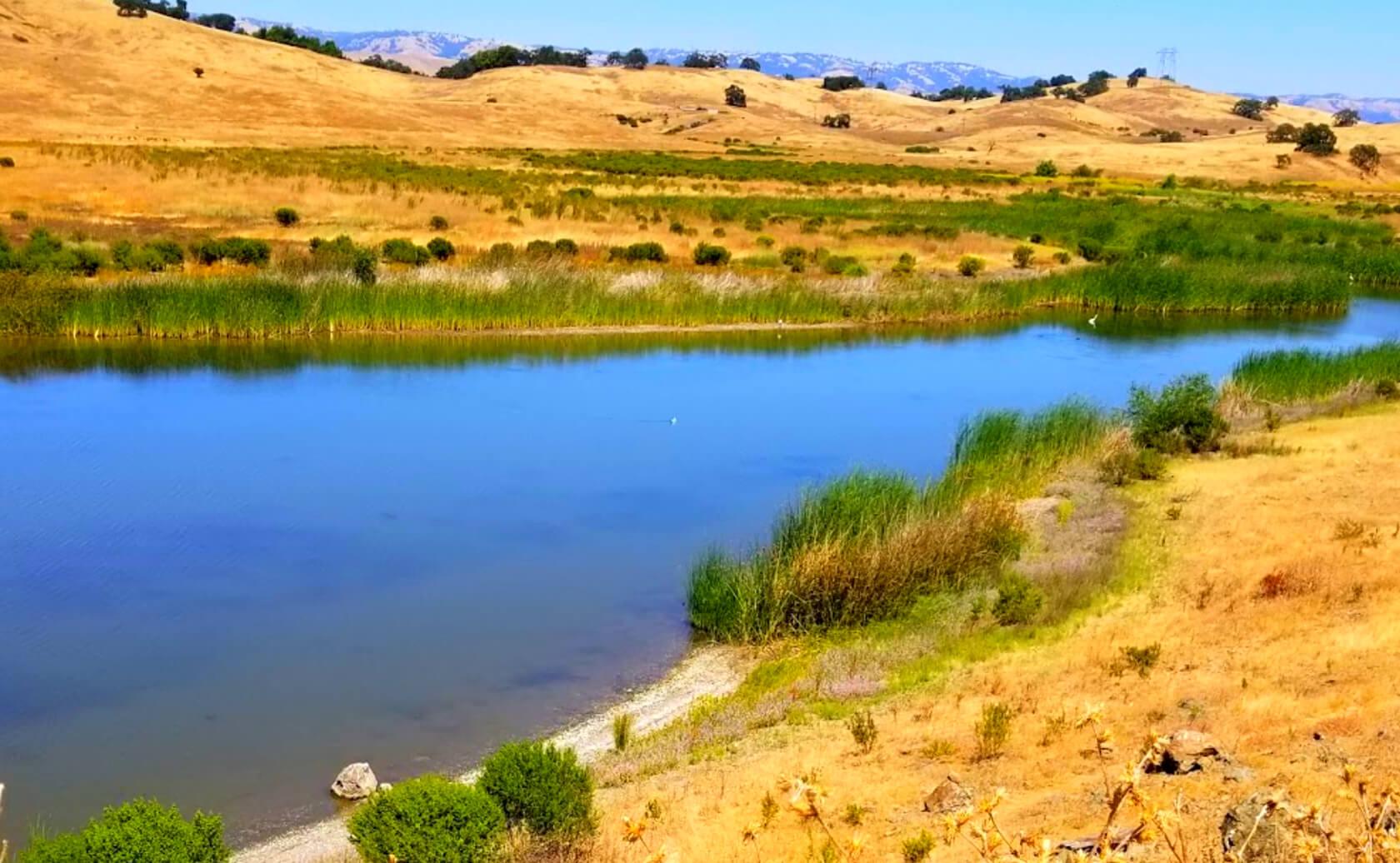 Calero-Reservoir-Lake-Fishing-Guide-Report-San-Jose-CA-01