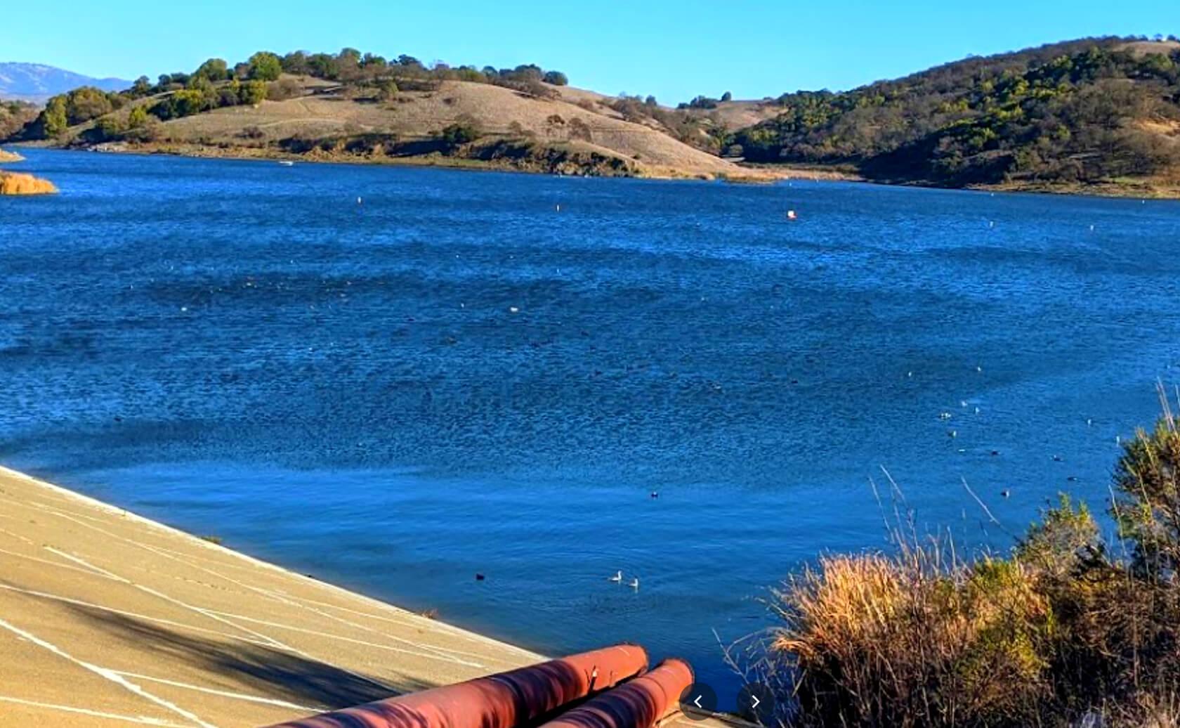 Calero-Reservoir-Lake-Fishing-Guide-Report-San-Jose-CA-06