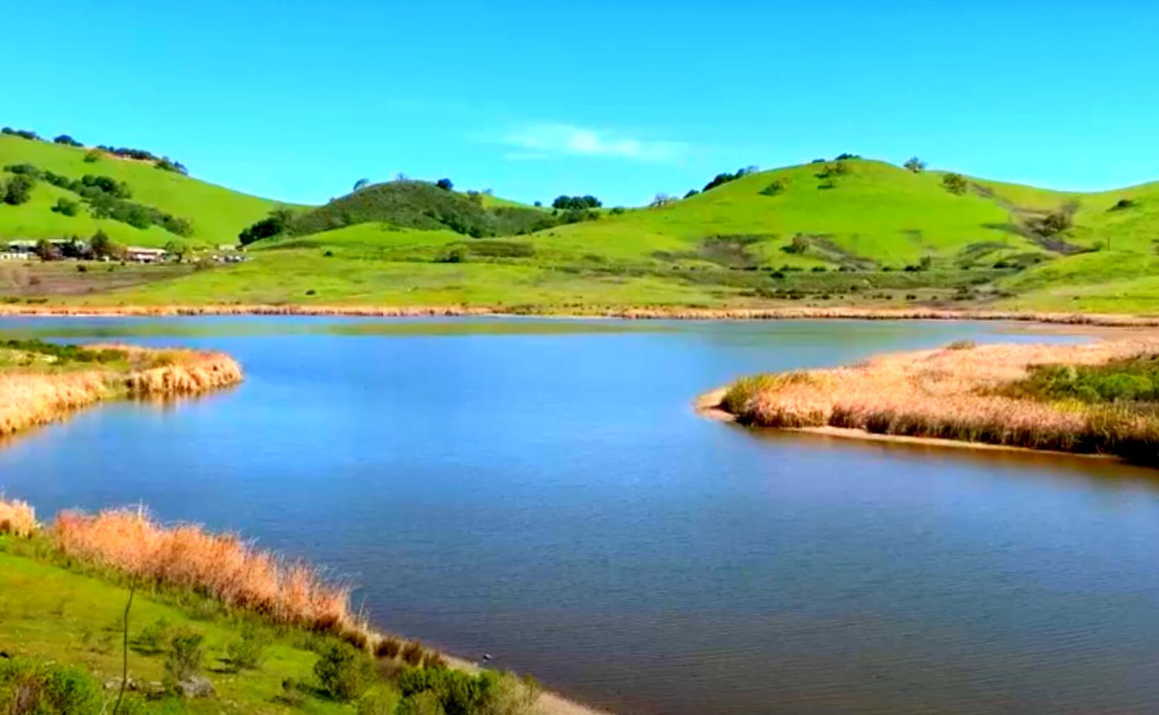 Calero-Reservoir-Lake-Fishing-Guide-Report-San-Jose-CA-07