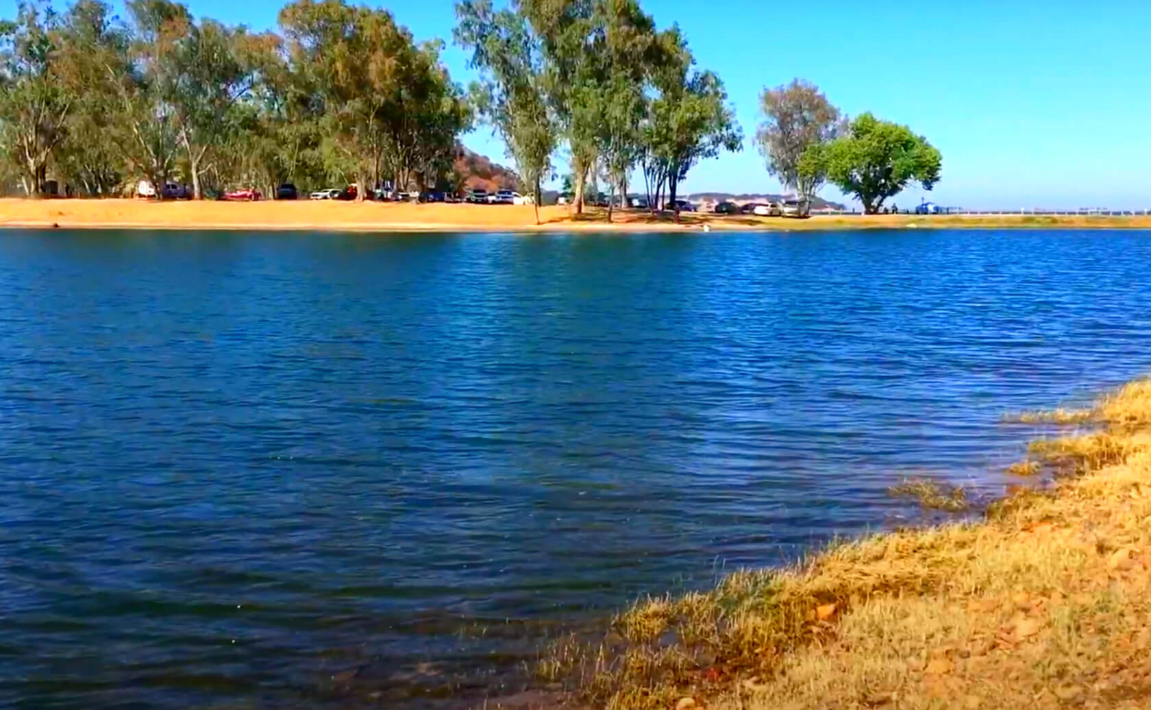 Camanche-Lake-Reservoir-Fishing-Guide-Report-California-05