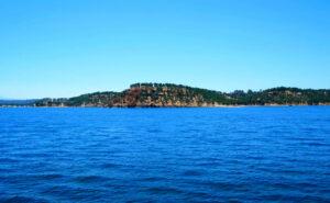 Camanche-Lake-Reservoir-Fishing-Guide-Report-California-07