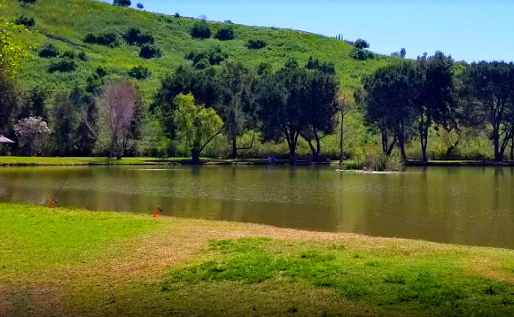 Carbon-Canyon-Park-Lake-Fishing-Guide-Report-Brea-CA-05