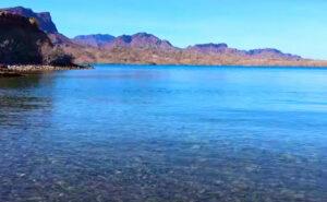 Cattail-Cove-State-Park-Lake-Fishing-Guide-Report-Lake-Havasu-AZ-06