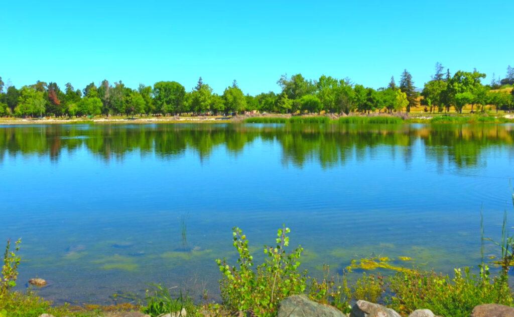 Cottonwood-Lake-Fishing-Guide-Report-San-Jose-CA-02