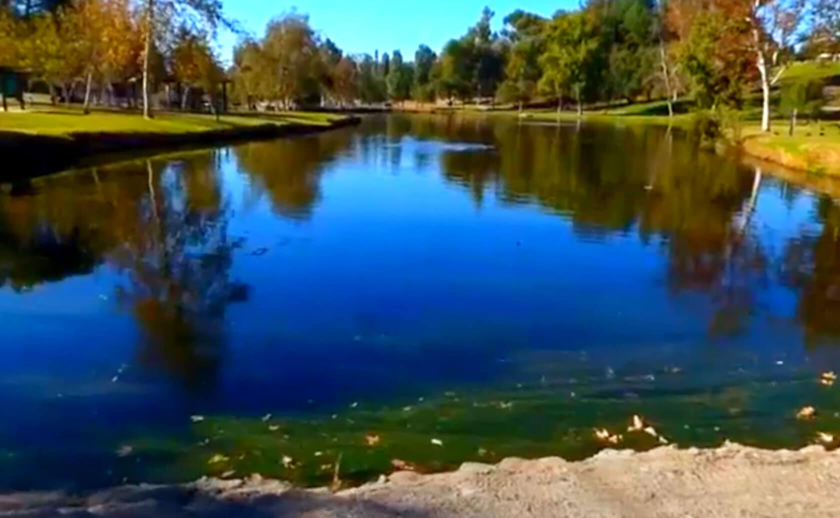 Craig-Regional-Park-Lake-Fishing-Guide-Report-Fullerton-CA-03