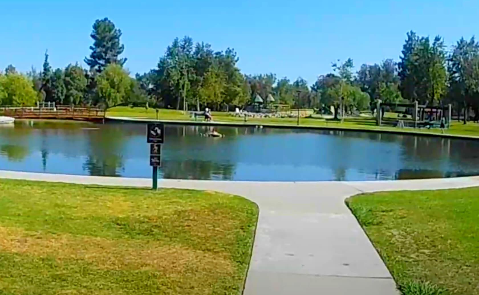 Craig-Regional-Park-Lake-Fishing-Guide-Report-Fullerton-CA-06