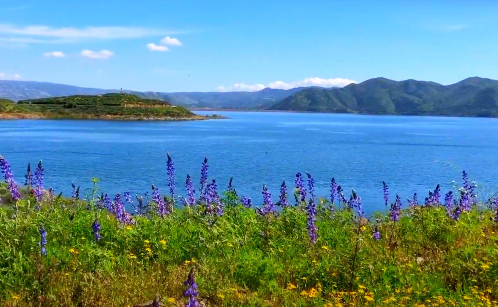 Diamond-Valley-Lake-Fishing-Guide-Report-Hemet-CA-01