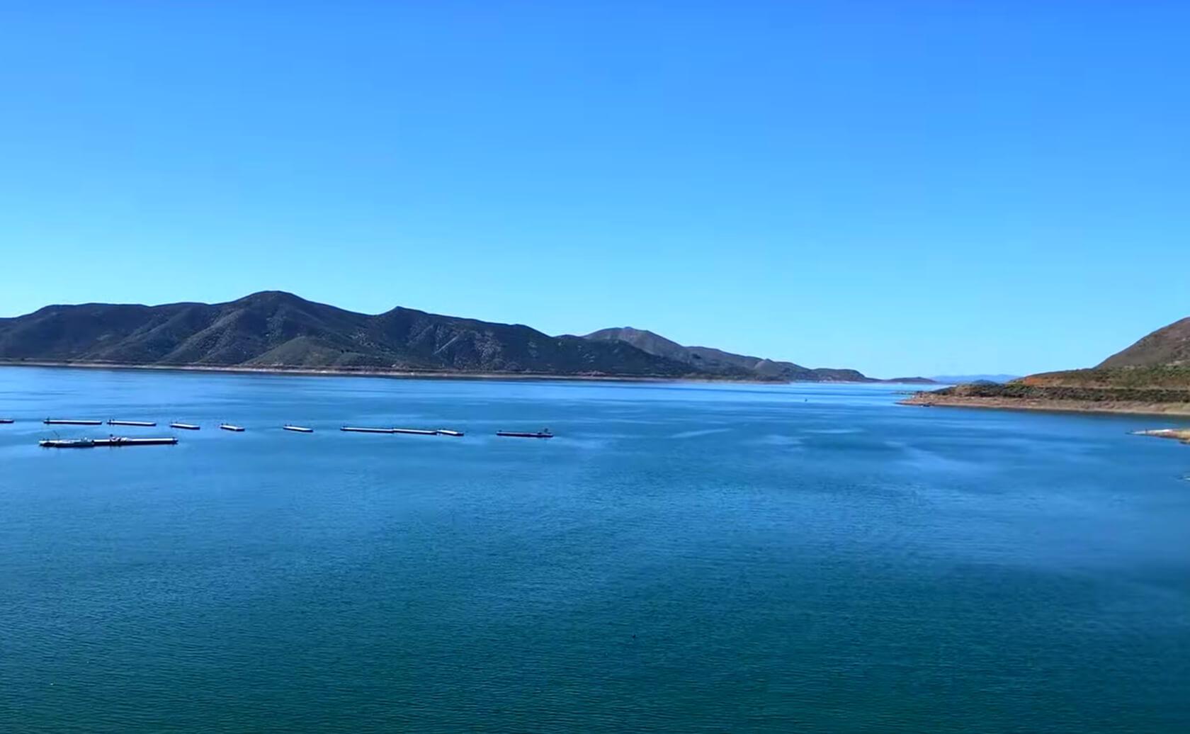 Diamond-Valley-Lake-Fishing-Guide-Report-Hemet-CA-08