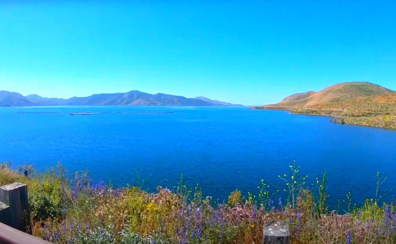 Diamond-Valley-Lake-Fishing-Guide-Report-Hemet-CA-11