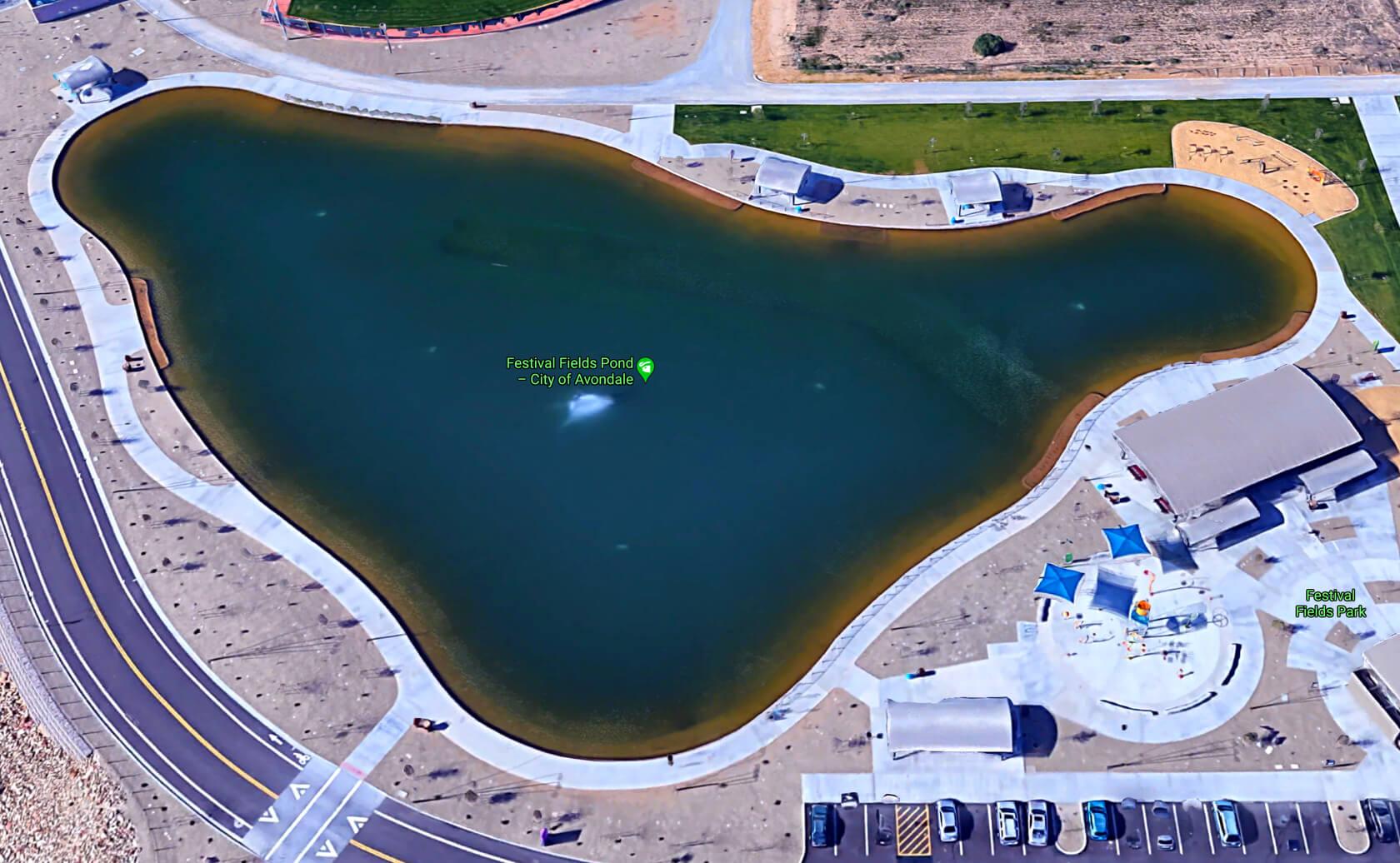Festival-Fields-Lake-fishing-guide-report-Avondale-AZ-01
