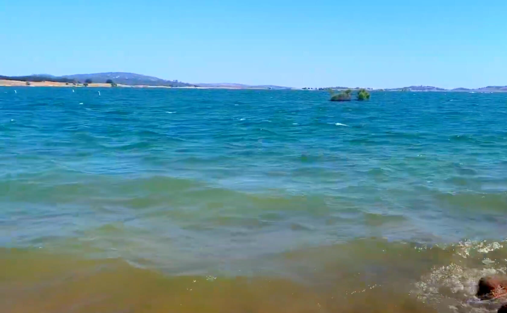 Folsom-Lake-Reservoir-Fishing-Guide-Report-California-06
