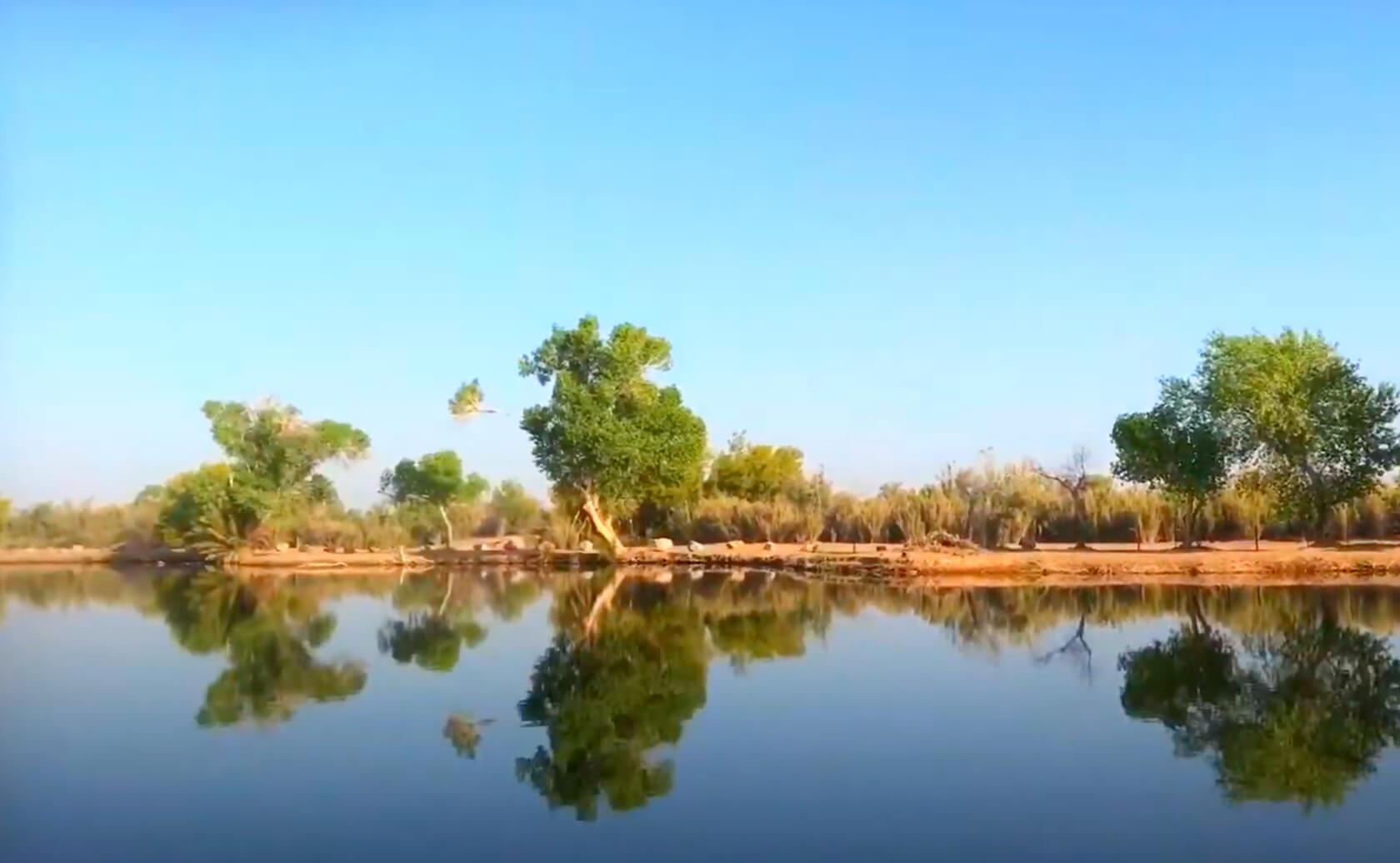 Fortuna-Lake-Fishing-Guide-Report-Yuma-AZ-01