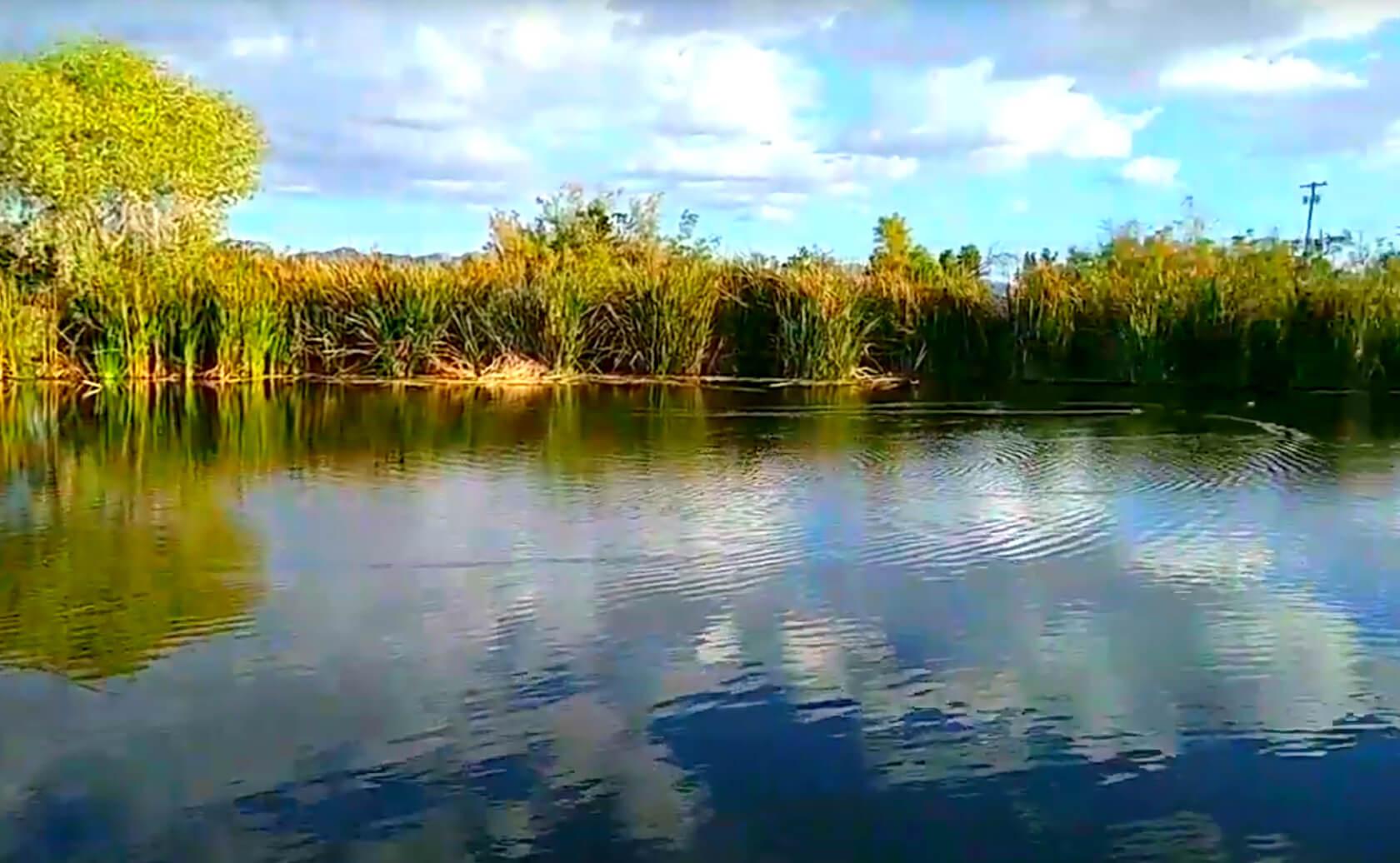 Fortuna-Lake-Fishing-Guide-Report-Yuma-AZ-02