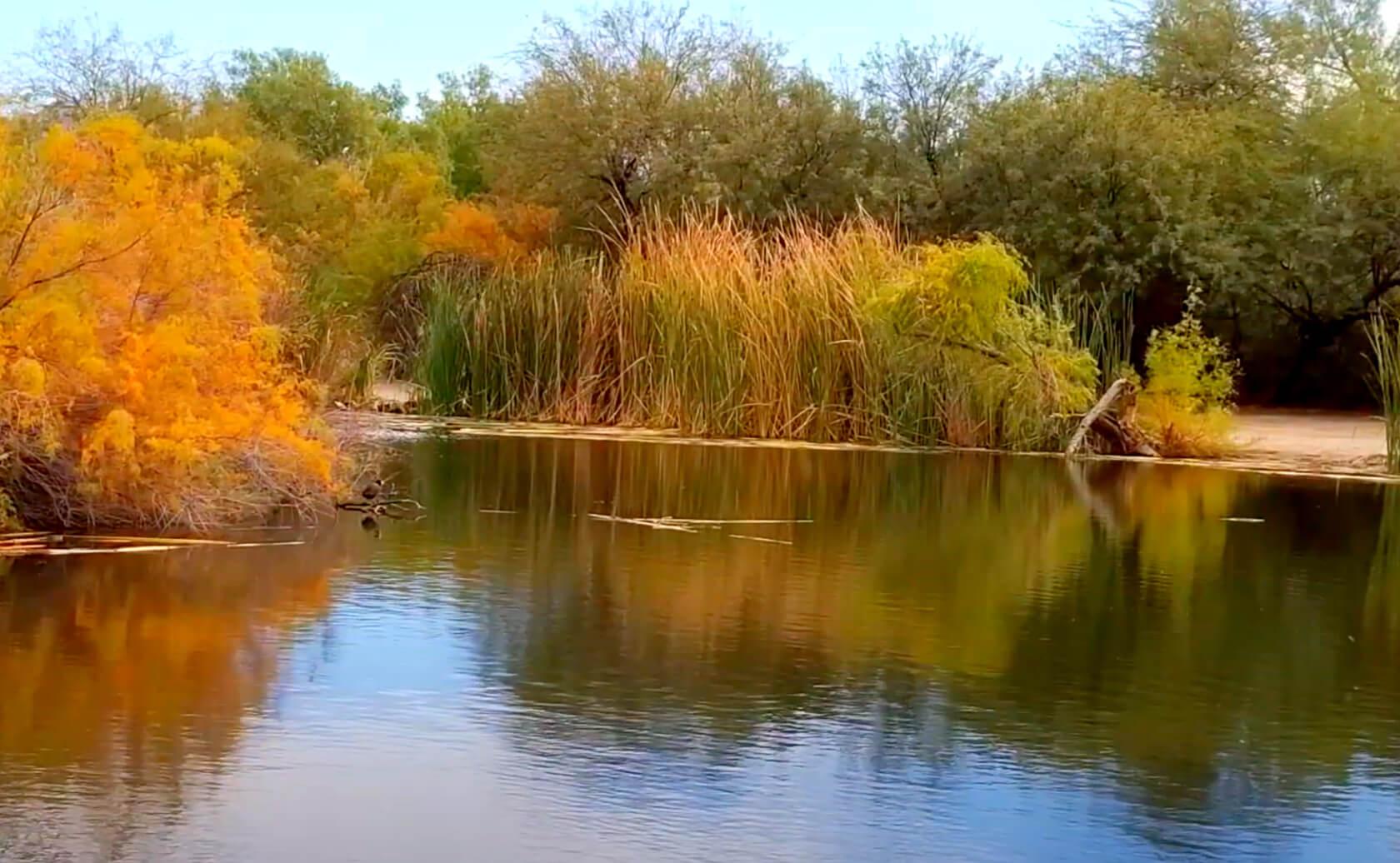 Fortuna-Lake-Fishing-Guide-Report-Yuma-AZ-04