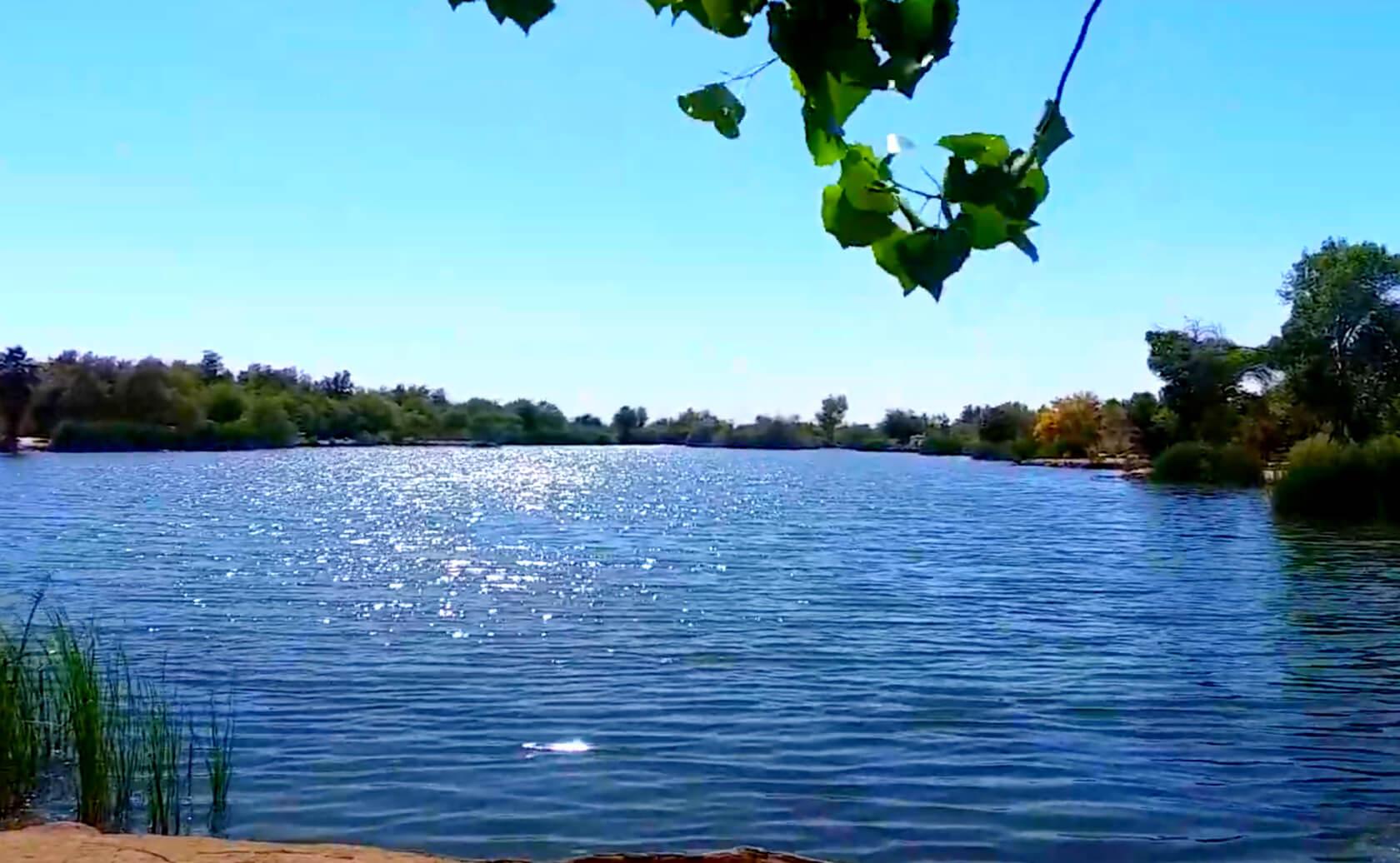 Fortuna-Lake-Fishing-Guide-Report-Yuma-AZ-06