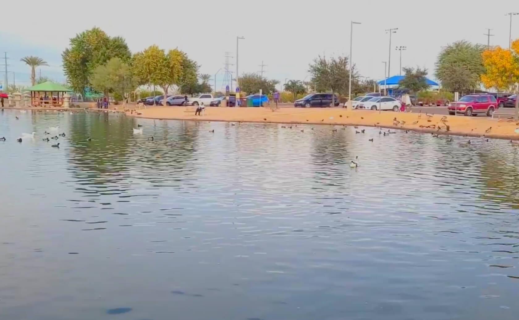 Friendship-Lake-fishing-guide-report-Avondale-AZ-02